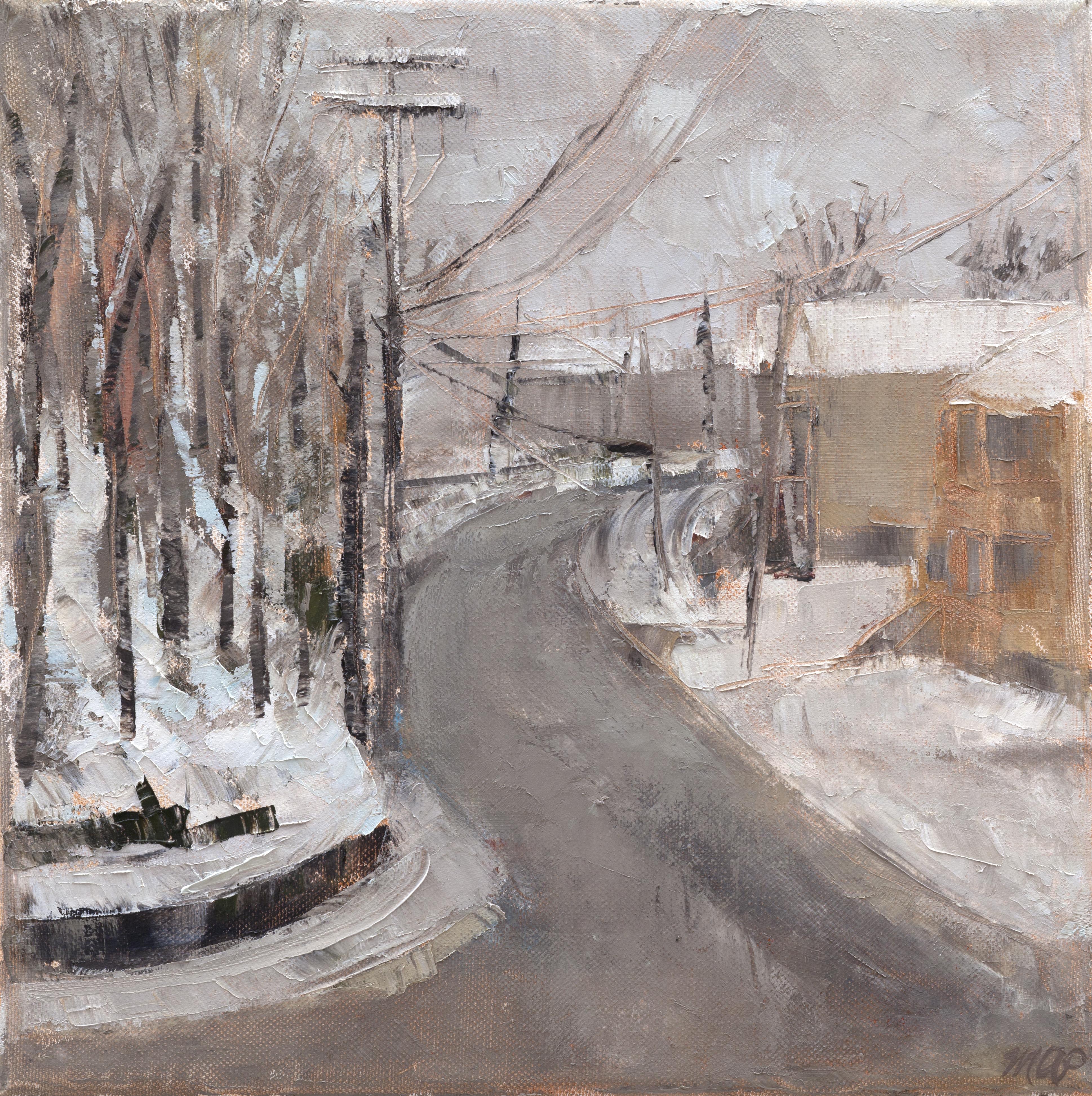 January Snow Landscape